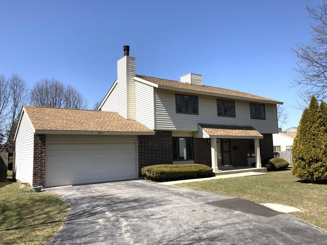 204 N Plum Grove Road, Roselle, IL 60172 (MLS #09908772) :: The Jacobs Group