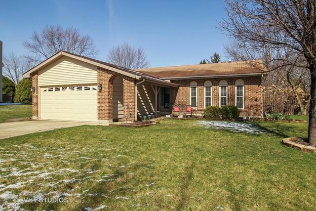 14330 S Birchdale Drive, Homer Glen, IL 60491 (MLS #09923016) :: Lewke Partners