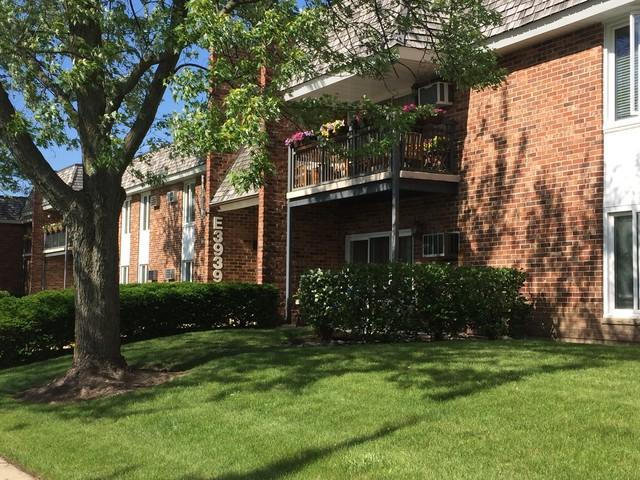 3939 Saratoga Avenue #201, Downers Grove, IL 60515 (MLS #09923709) :: The Wexler Group at Keller Williams Preferred Realty