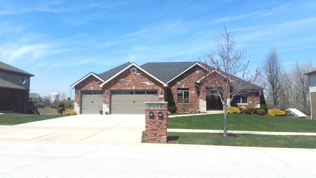 8610 Farmview Drive, Frankfort, IL 60423 (MLS #09924286) :: The Wexler Group at Keller Williams Preferred Realty
