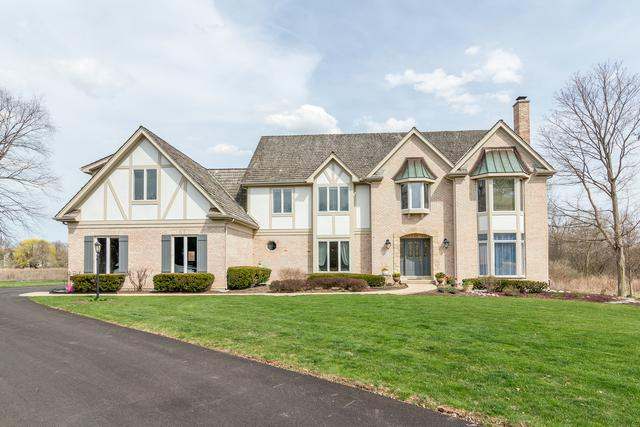 5238 Southwell Court, Long Grove, IL 60047 (MLS #09939830) :: The Schwabe Group