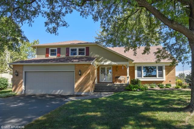 775 S Middleton Avenue, Palatine, IL 60067 (MLS #09946354) :: The Wexler Group at Keller Williams Preferred Realty