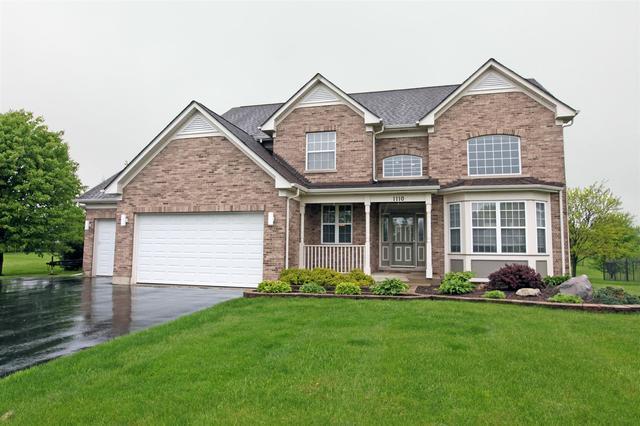 1110 Joseph Circle, Johnsburg, IL 60051 (MLS #09958153) :: Lewke Partners