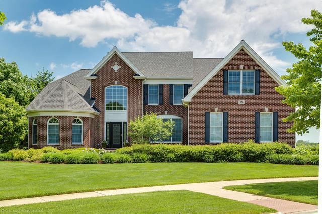 15 Somerset Hills Court, Hawthorn Woods, IL 60047 (MLS #09960639) :: Lewke Partners