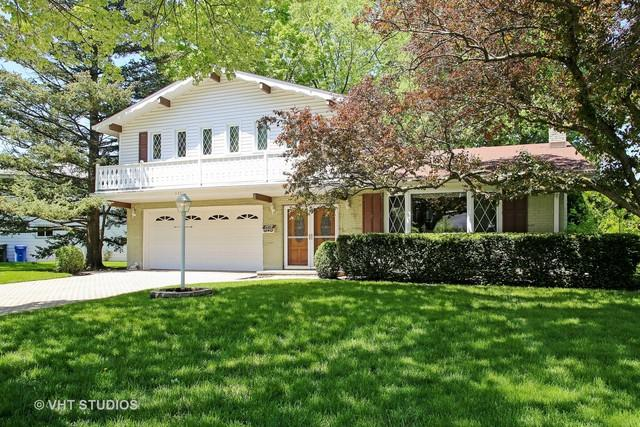1310 E Mulberry Lane, Mount Prospect, IL 60056 (MLS #09961358) :: The Schwabe Group