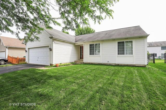171 Crisfield Drive, Grayslake, IL 60030 (MLS #09965282) :: The Wexler Group at Keller Williams Preferred Realty