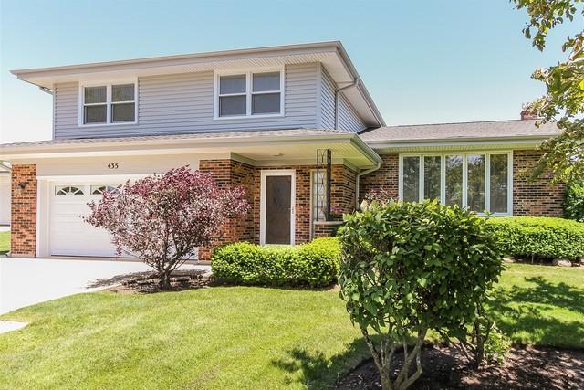 435 Timothy Court, Schaumburg, IL 60193 (MLS #09981310) :: Lewke Partners