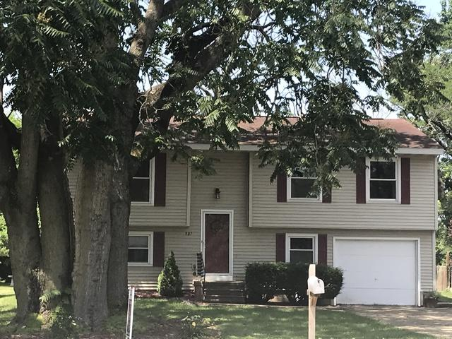 907 S Division Street, Mahomet, IL 61853 (MLS #09984548) :: Littlefield Group