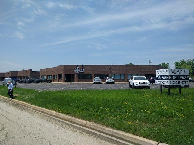 305-317 Oswalt Avenue #317, Batavia, IL 60510 (MLS #09986890) :: The Dena Furlow Team - Keller Williams Realty