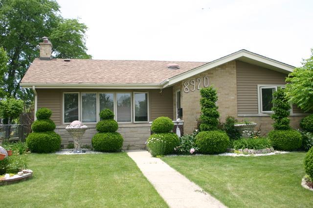 8920 Osceola Avenue, Morton Grove, IL 60053 (MLS #09987961) :: Ani Real Estate