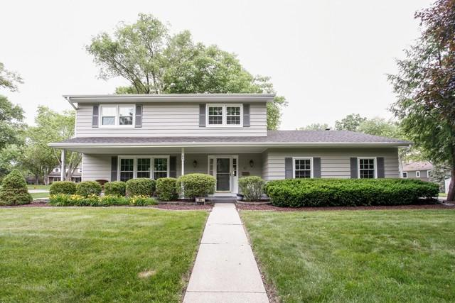 45 Bunting Lane, Naperville, IL 60565 (MLS #09988049) :: Lewke Partners