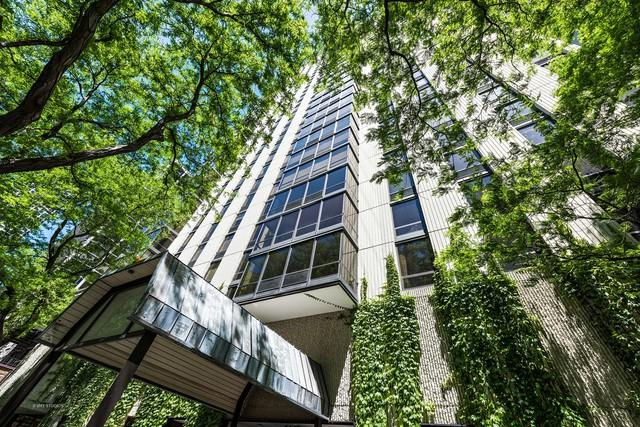 100 E Bellevue Place 8B, Chicago, IL 60611 (MLS #09988663) :: Property Consultants Realty