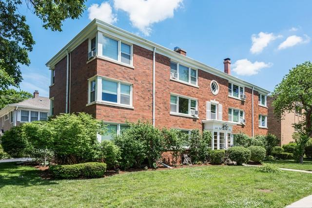 2223 Central Street #2, Evanston, IL 60201 (MLS #09990540) :: The Dena Furlow Team - Keller Williams Realty