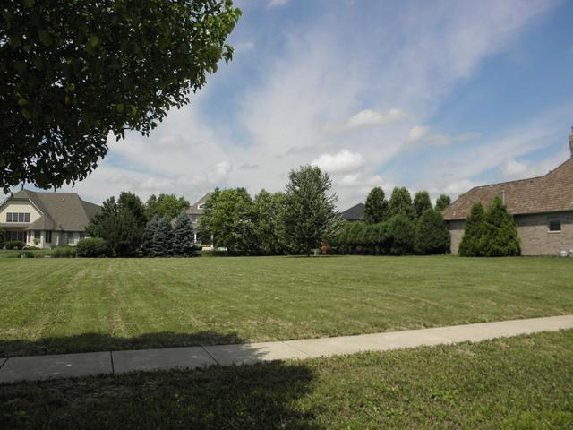 21258 Woodland Way, Shorewood, IL 60404 (MLS #09991209) :: John Lyons Real Estate