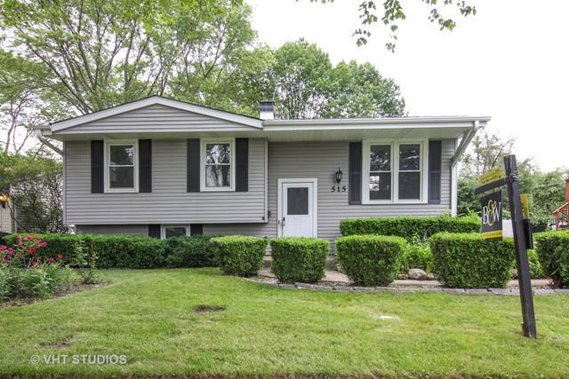 515 Patton Drive, Buffalo Grove, IL 60089 (MLS #09992958) :: Ani Real Estate