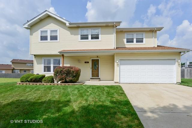 116 Willow Court, Matteson, IL 60443 (MLS #10007864) :: The Jacobs Group