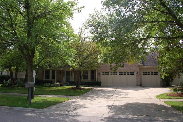 942 E Rosewood Avenue, Naperville, IL 60563 (MLS #10008578) :: Ryan Dallas Real Estate