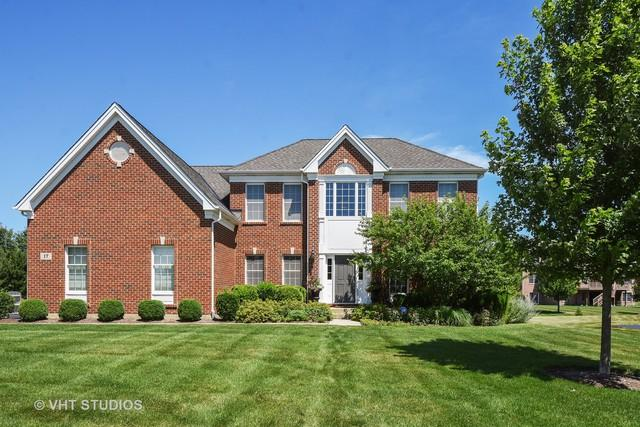 17 Olympic Drive, South Barrington, IL 60010 (MLS #10018049) :: The Jacobs Group