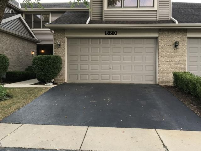 529 N Walden Drive, Palatine, IL 60067 (MLS #10019707) :: The Jacobs Group