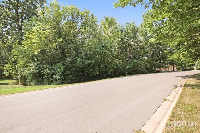 Lot 27 Mitchell Drive, Plano, IL 60545 (MLS #10022880) :: Berkshire Hathaway HomeServices Snyder Real Estate