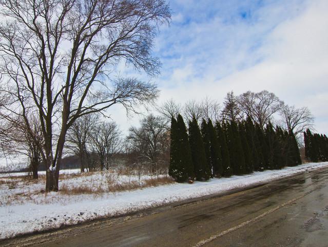 8200 S Lincoln Road, Gardner, IL 60424 (MLS #10040396) :: The Dena Furlow Team - Keller Williams Realty