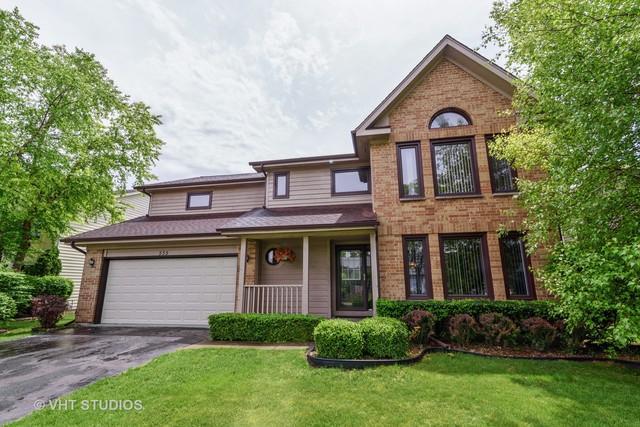 535 Newtown Drive, Buffalo Grove, IL 60089 (MLS #10043957) :: Littlefield Group