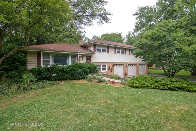 202 Elm Street, Prospect Heights, IL 60070 (MLS #10044435) :: Domain Realty