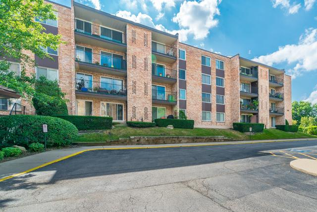 1101 S Hunt Club Drive #203, Mount Prospect, IL 60056 (MLS #10046144) :: The Jacobs Group