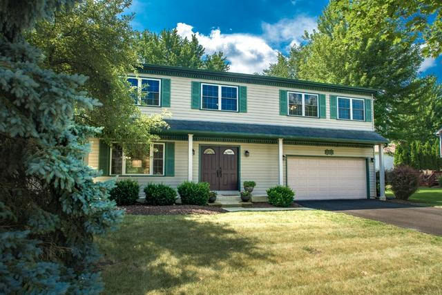 1234 Springdale Circle, Naperville, IL 60564 (MLS #10049401) :: Domain Realty