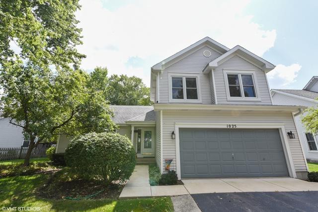 1025 Hobble Bush Lane, Elgin, IL 60120 (MLS #10054978) :: Lewke Partners