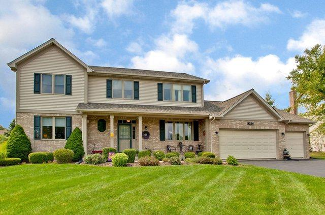 1224 Hunters Ridge E, Hoffman Estates, IL 60192 (MLS #10055572) :: The Jacobs Group