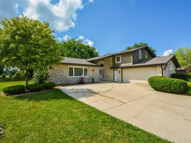 14234 Pheasant Lane, Orland Park, IL 60467 (MLS #10057848) :: Baz Realty Network | Keller Williams Preferred Realty