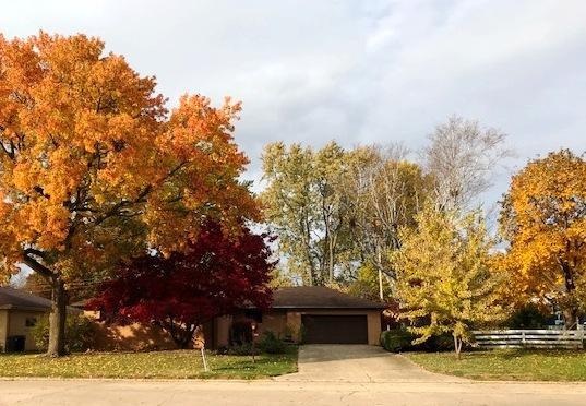 1106 Eliot Drive, Urbana, IL 61801 (MLS #10063055) :: Ryan Dallas Real Estate