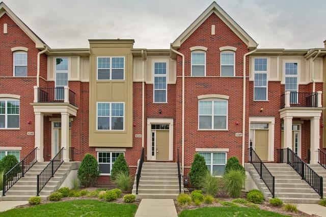 1243 Danforth Court, Vernon Hills, IL 60061 (MLS #10077162) :: The Saladino Sells Team