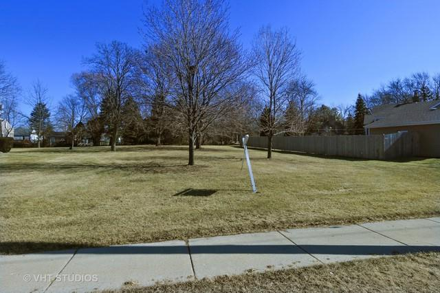 35 S O'plaine Road, Gurnee, IL 60031 (MLS #10082943) :: Lewke Partners