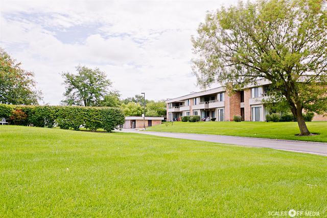 1255 N Sterling Avenue #110, Palatine, IL 60067 (MLS #10087033) :: Lewke Partners