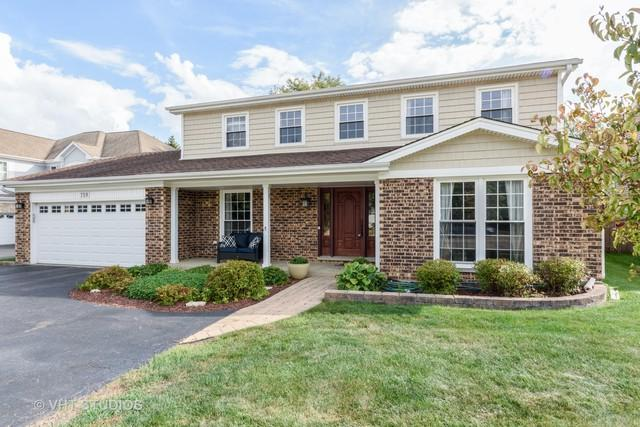 719 E Hintz Road, Arlington Heights, IL 60004 (MLS #10098851) :: Baz Realty Network | Keller Williams Preferred Realty