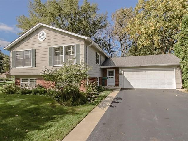 2714 N Highland Avenue, Arlington Heights, IL 60004 (MLS #10103600) :: Baz Realty Network | Keller Williams Preferred Realty