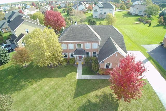 16 Deerfield Drive, Hawthorn Woods, IL 60047 (MLS #10107026) :: The Dena Furlow Team - Keller Williams Realty