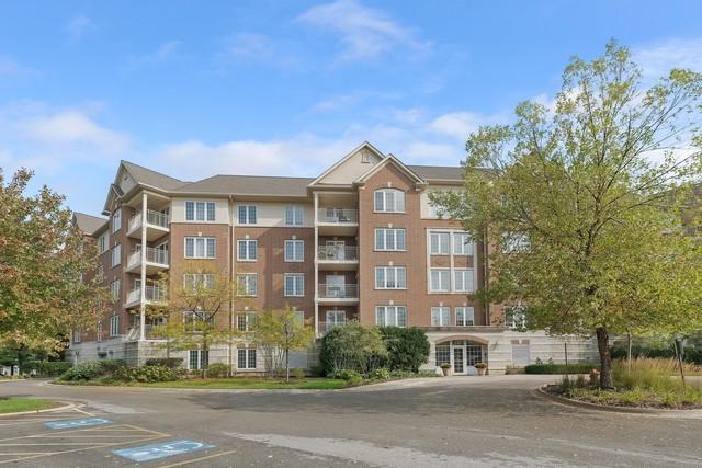 640 Robert York Avenue #203, Deerfield, IL 60015 (MLS #10108406) :: Ani Real Estate