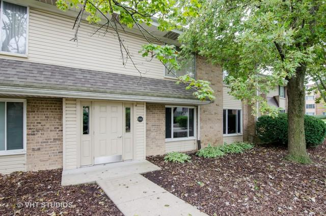 1745 Robin Walk D, Hoffman Estates, IL 60169 (MLS #10108610) :: The Mattz Mega Group