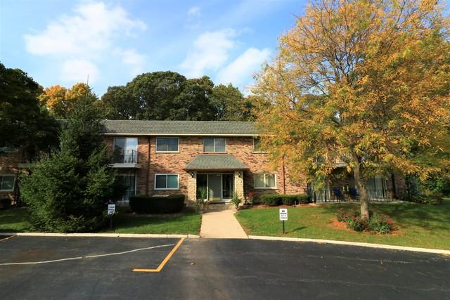 191 Hillcrest Terrace 2A, Bloomingdale, IL 60108 (MLS #10108830) :: The Dena Furlow Team - Keller Williams Realty