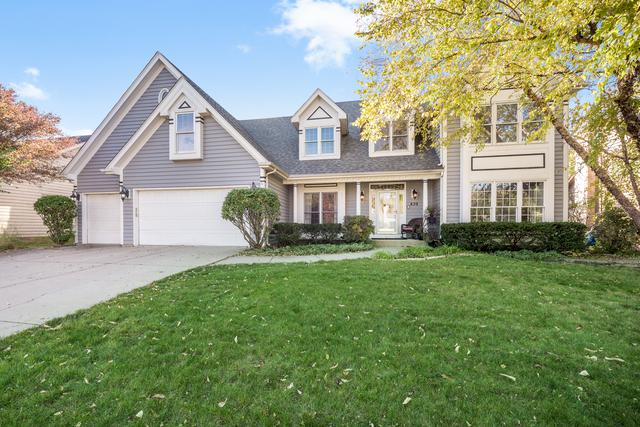 839 Lockwood Circle, Naperville, IL 60563 (MLS #10115934) :: Ryan Dallas Real Estate