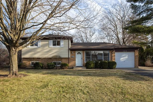1019 Castle Drive, Glenview, IL 60025 (MLS #10122825) :: Helen Oliveri Real Estate