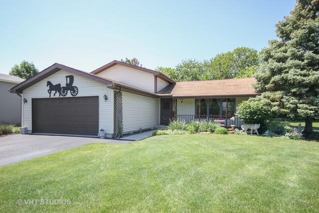 19546 S Skye Drive, Frankfort, IL 60423 (MLS #10124873) :: Baz Realty Network   Keller Williams Preferred Realty