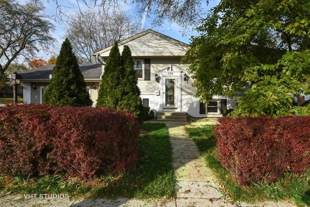 530 S Buffalo Grove Road, Buffalo Grove, IL 60089 (MLS #10126068) :: Ani Real Estate