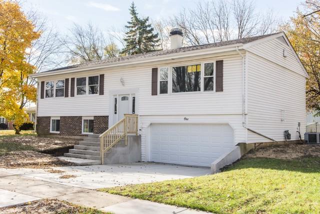 1 E Beechwood Court, Buffalo Grove, IL 60089 (MLS #10127029) :: Ani Real Estate