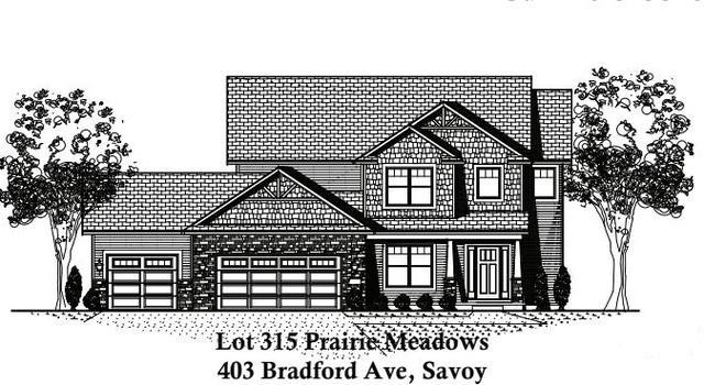 403 Bradford Avenue, Savoy, IL 61874 (MLS #10129177) :: Ryan Dallas Real Estate