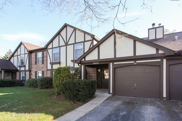 4800 Kimball Hill Drive D2, Rolling Meadows, IL 60008 (MLS #10129498) :: Ani Real Estate