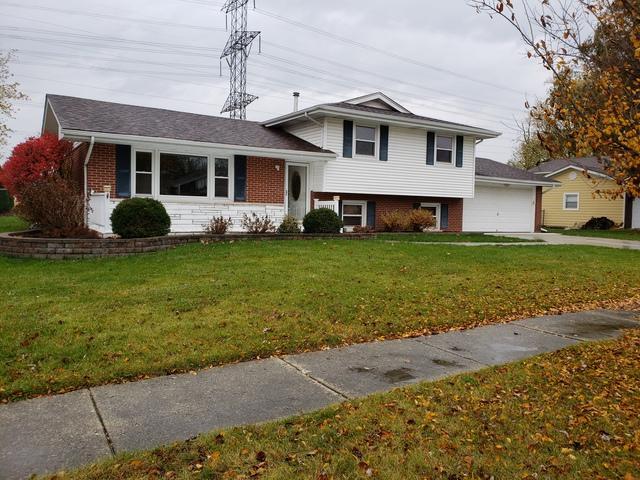 134 Pfaff Drive, Frankfort, IL 60423 (MLS #10129673) :: Ani Real Estate